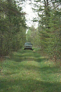 Pigeon River State Forest Duby Lake Road Cheboygan