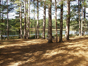 pigeon river state forest round lake campground. Black Bedroom Furniture Sets. Home Design Ideas
