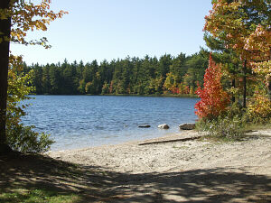 Pretty Lake State Forest Campground Luce County Michigan